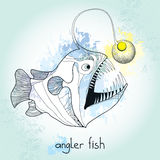 Angler fish or monkfish with lantern on the head. Lophius piscatorius. Royalty Free Stock Photography