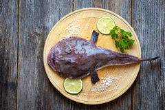Angler fish. On a wooden board Royalty Free Stock Photo