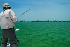 Angler fly fishing for Tarpon Florida stock images