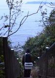 An angler and the Japanese sea. An angler and the Japanese sea in wakayama Japan stock image