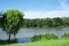 Angler lake. Stock Images
