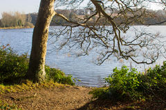 Angler`s fishing lake at Portavoe near Groomsport County Down Ireland. This is a popular spot for local walkers and with fishermen as the reservoir is Royalty Free Stock Photography
