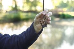 Angler`s hand holds a groundbait box with a bait. An angler`s hand holds a groundbait box with bait and a leader with a hook with larvae of fly royalty free stock images