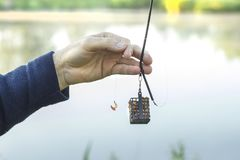 Angler`s hand holds a groundbait box with bait and a leader with a hook with larvae of fly. An angler`s hand holds a groundbait box with bait and a leader with a royalty free stock images