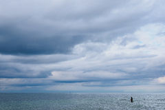 Angler on shore of the Baltic Sea royalty free stock photo