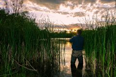 Angler. Standing on the lake shore during sunset royalty free stock photos