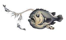 Anglerfish Stock Image
