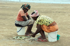 Anglerfish. Two women, wives of fishermen on the beach at Mambrui golden beach in Kenya clean fish royalty free stock photos