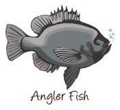Anglerfish, Color Illustration Stock Photography