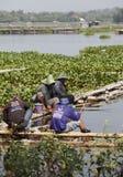 Anglers Stock Image