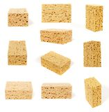 Angles of porous sponge. Different angles of large porous sponges isolated on white background stock photography