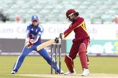 Anglia v Indies Zachodnich kobiet T20 krykieta Międzynarodowy dopasowanie Obrazy Stock