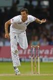 2012 Anglia v Południowa Afryka meczu reprezentacji narodowych 3rd dzień 4 Fotografia Stock