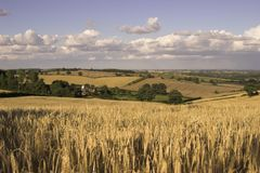 anglicy krajobrazu Obraz Royalty Free