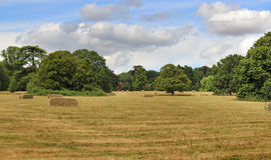 anglicy kształtują obszaru wiejskiego Zdjęcie Royalty Free