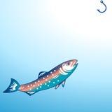 Angling/fishing. Angling fishing, catch fresh fish Stock Image