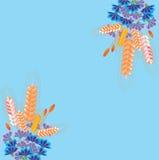 Angoli dell'invito su fondo blu con l'ornamento del fiore. Fotografie Stock