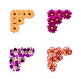 Angoli della foto dei fiori Fotografie Stock