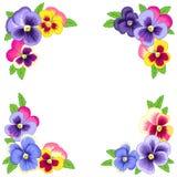 Angoli floreali Immagini Stock Libere da Diritti