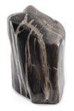 Angolo antico di legno petrificato del nero del pezzo Fotografie Stock Libere da Diritti