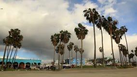Angolo basso della spiaggia di Venezia della tempesta ricevuta stock footage