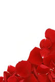 Angolo del blocco per grafici del petalo Fotografie Stock