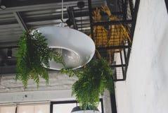 Angolo della caffetteria Fotografia Stock