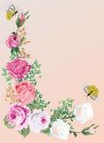 Angolo della Rosa con la farfalla Fotografia Stock