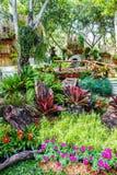 Angolo felice al giardino dei fiori e degli alberi fotografia stock
