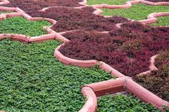 Angoori Bagh ή κήπος των σταφυλιών, οχυρό Agra, Ινδία Στοκ εικόνα με δικαίωμα ελεύθερης χρήσης