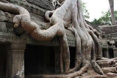 Angor Wat is in Siem Riep in Cambodia.