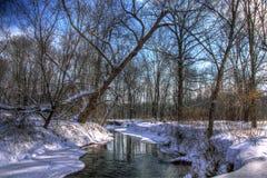 Angra coberto de neve nas madeiras Fotos de Stock Royalty Free