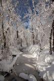 Angra congelada Foto de Stock