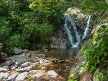 A angra da cabine cai em Grayson Highlands State Park foto de stock royalty free