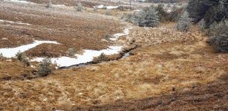 Angra da montanha, paisagem no inverno imagens de stock royalty free