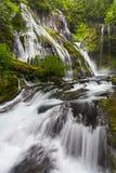A angra da pantera cai em Washington State fotos de stock royalty free