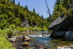 Angra da sequoia vermelha, estrada 180, parque nacional dos reis Garganta, Californ Imagem de Stock