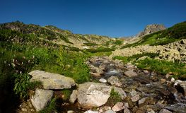 Angra das montanhas no dia de verão Fotos de Stock