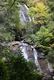 Angra de Anna Ruby Falls Foto de Stock
