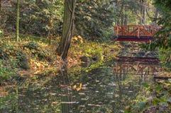 Angra e ponte de madeira na floresta do outono Fotos de Stock