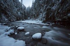 Angra Frost de Wells Imagem de Stock