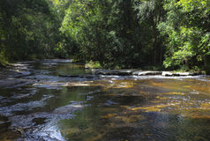 Angra no parque nacional de Phu Kradueng Imagens de Stock