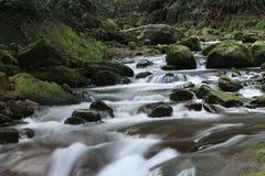 Angra no parque nacional de Zhangjiajie, China imagem de stock royalty free