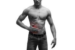 Angriff der Blinddarmentzündung, Schmerz in der rechten Seite des muskulösen männlichen Körpers, lokalisiert auf weißem Hintergru Lizenzfreie Stockfotos