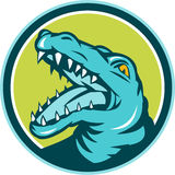 Angry Alligator Head Snout Circle Retro Royalty Free Stock Photo