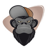 Angry ape with cap Stock Photos