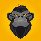 Angry ape cartoon Royalty Free Stock Photo