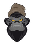 Angry ape with hat royalty free illustration