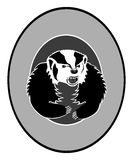 Angry Badger Logo Royalty Free Stock Photo