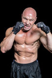 Angry bald fighter with gloves Royalty Free Stock Image